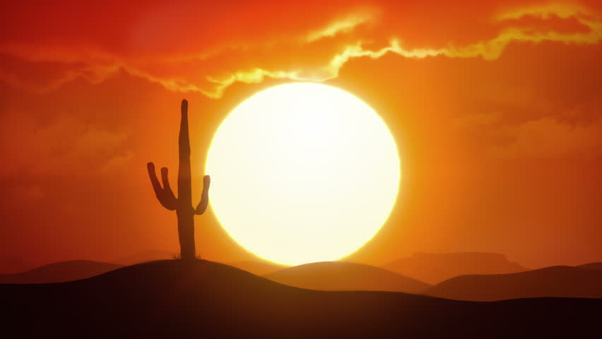 Time lapse of big sunrise over desert with silhouette of lone cactus in foreground #31515772