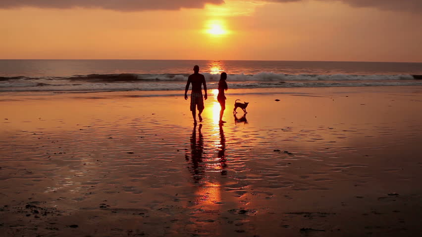 couple walking on beach with dog at sunset in bali stock