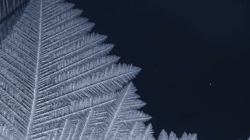 Freezing pattern covering the dark background. For Christmas and New Year Holidays exclusive backdrop. 4K high quality footage.