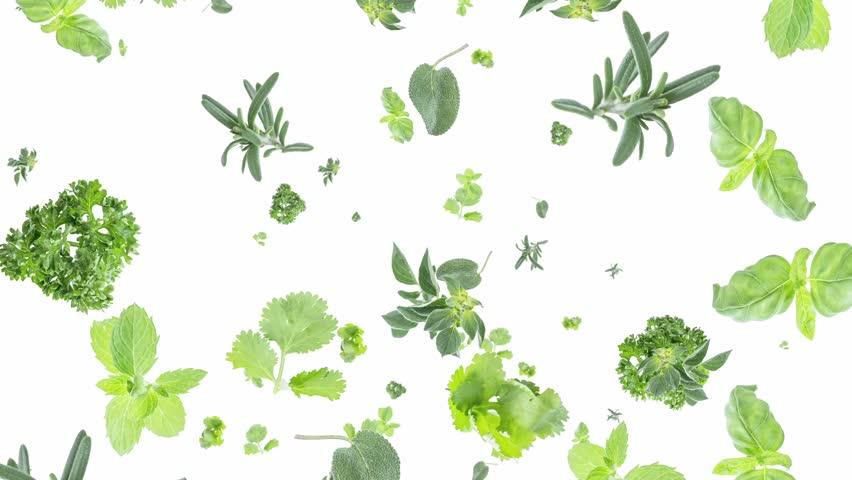Herbs Falling Down O