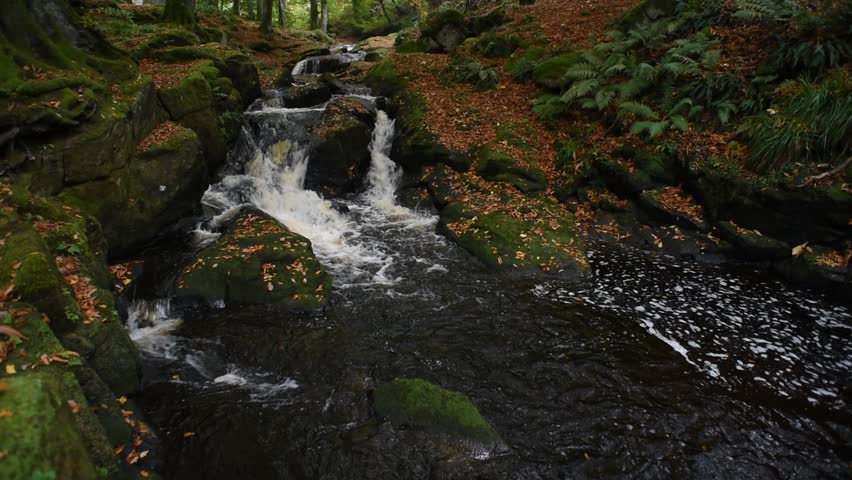 Autumn river in the forest in Wicklow Mountains - Ireland/ Autumn river/ Autumn river cascade in Ireland | Shutterstock HD Video #32045542