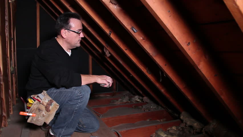 A contractor inspected an attic.