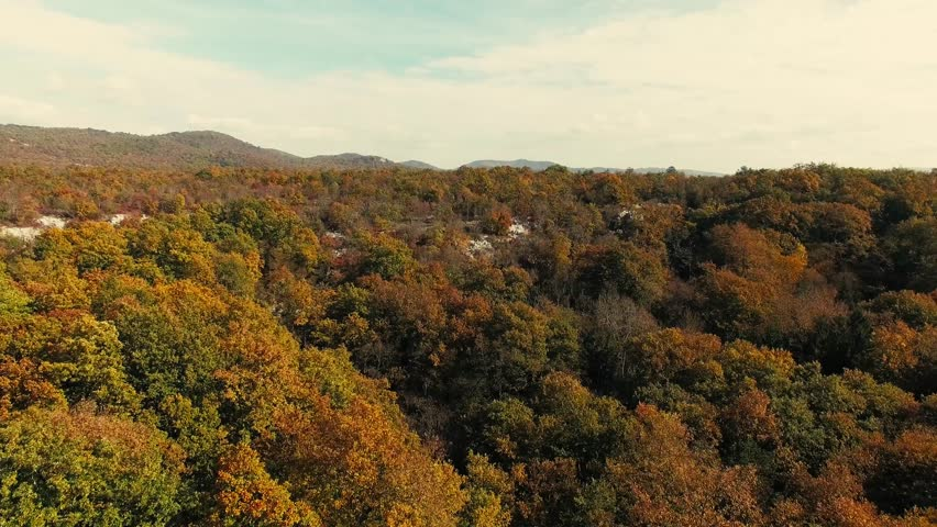 Drone flying on stunning colorful autumn fall forest. Drone Aerial View Concept.