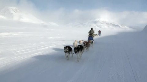 People expedition on dog sled team husky Eskimo road of North Pole in Arctic. Way from airport Longyear to Pyramiden Spitsbergen on background of glacier mountains Svalbard.