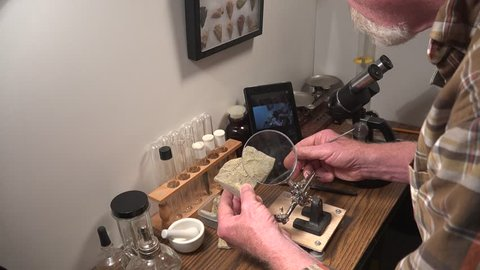 Archeologist , geologist studying fossils in rock with a magnifying glass