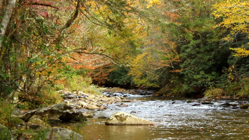 Autumn leaves fall into a scenic rocky river in Tennessee, USA