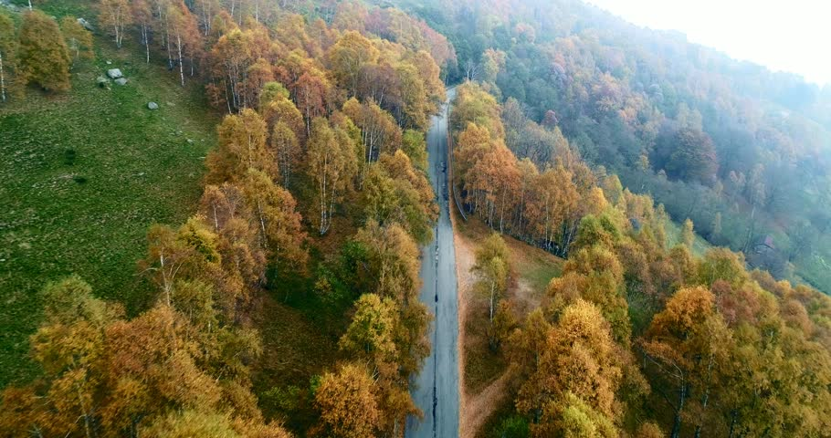 Forward aerial top view over road in colorful countryside autumn forest.Fall orange,green,yellow red tree woods.Mountains street path establisher.4k drone flight straight-down establishing shot | Shutterstock HD Video #32701612