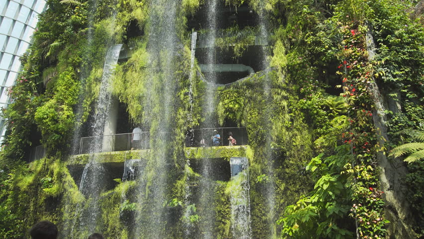 SINGAPORE - CIRCA MAY 2017: Artificial waterfalls flow from a vertical garden inside the Cloud Forest at Gardens by the Bay. FullHD 1080p footage