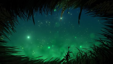 Looking at sky from grass at night with fireflies loop