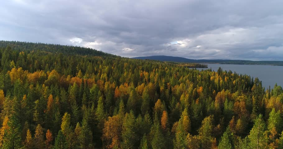 Autumn color forrest, Cinema 4k aerial view over colorful autumn trees, towards lake and fjeld tunturi, on a sunny and rainy fall day, near pallas-yllas national park, Lapland, Finland | Shutterstock HD Video #32841202