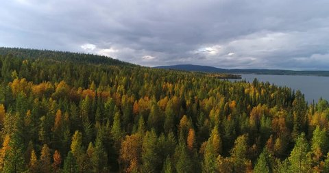 Autumn color forrest, Cinema 4k aerial view over colorful autumn trees, towards lake and fjeld tunturi, on a sunny and rainy fall day, near pallas-yllas national park, Lapland, Finland