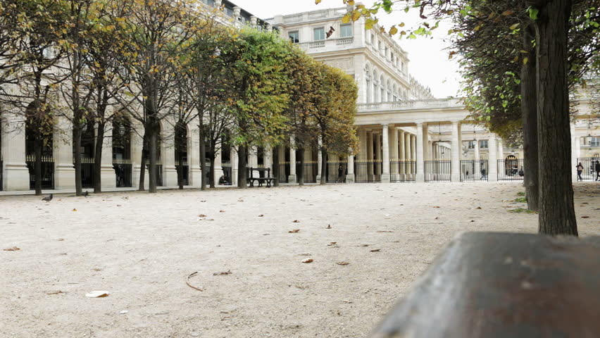 Famous palace and garden in Paris, France - Palais Royal in autumn. Selective focus. | Shutterstock HD Video #32878288