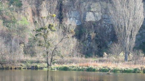 Rock and bare trees on the bank of the river Southern Bug (Ukraine, Vinnitsa)