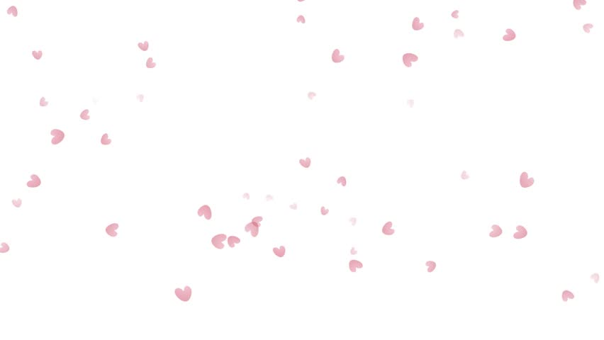 Little Heart Particles For Romantic Valentine Background   HD Stock Video  Clip