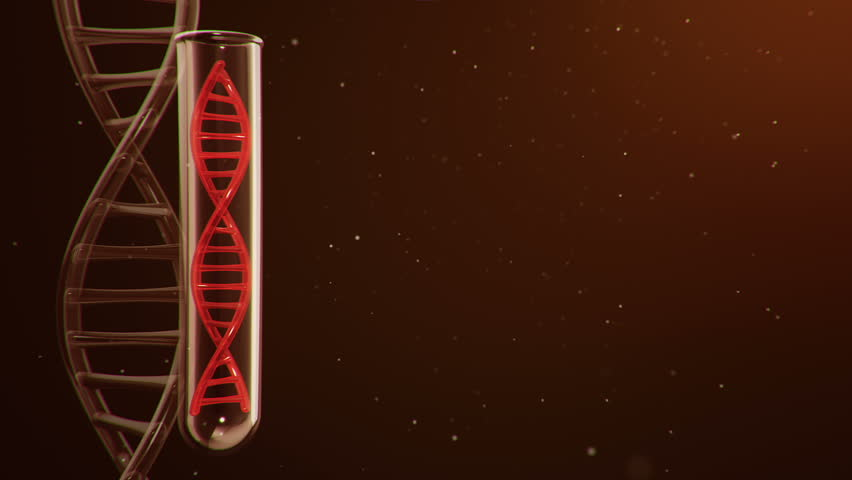 Science background with animation rotation of DNA helix inside glass flask. Animation of seamless loop.   Shutterstock HD Video #33374422
