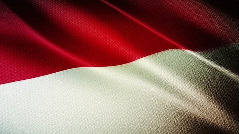 Monaco Country flag animation stock footage. Monaco Country flag animation waving in the breeze with cotton texture and in close up.