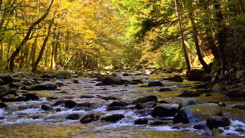 A river flows over rocks in this beautiful scene in the Tennessee mountains in autumn