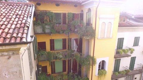 Plants grow on the windowsills and balconies of houses.