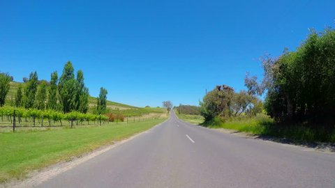 Vehicle POV, driving along scenic Field Street past rows of grape vines, in McLaren Vale, South Australia.