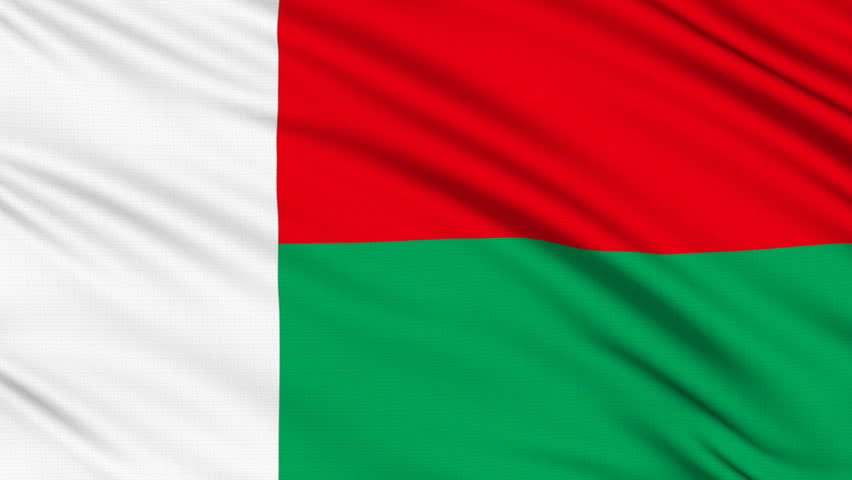 Madagascar Flag With Real Structure Of A Fabric Stock Footage - Madagascar flag