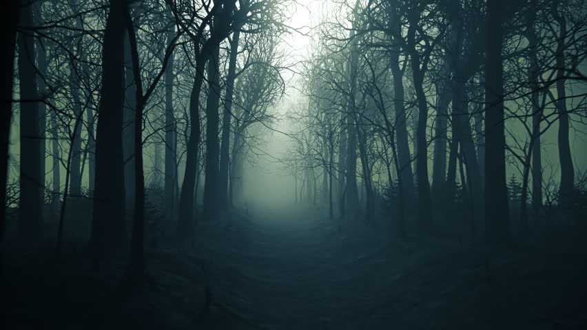 03070 Seamless looping animation of winter forest alley in a fog.