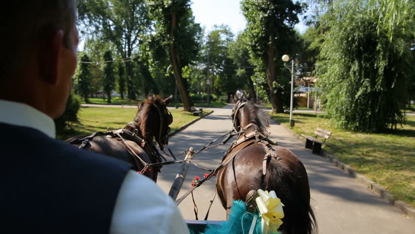 Fairy-tale cinderella wedding carriage and horse magical wedding couple bride and groom in park