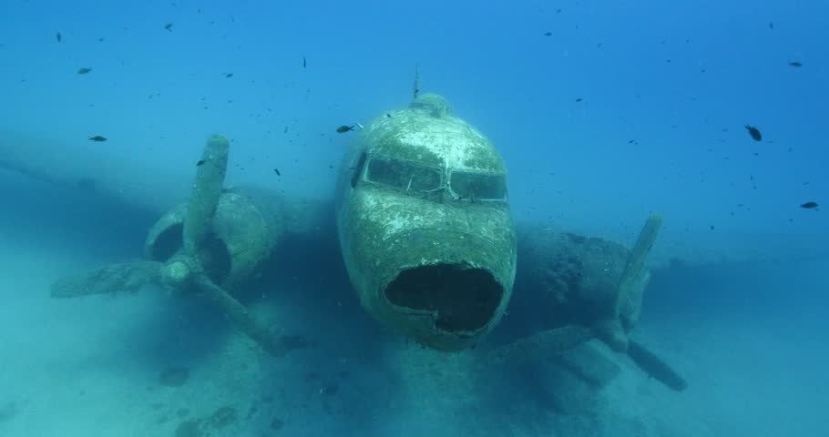 exploring underwater air plane wreck fish around