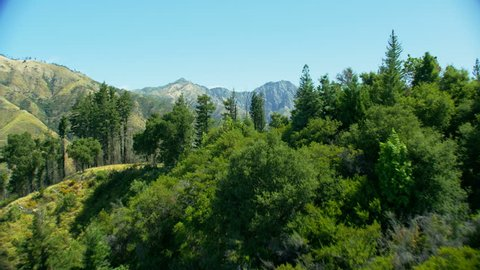 Aerial view over Redwood forest trees to lush green mountain valleys and hills Big Sur California USA RED WEAPON