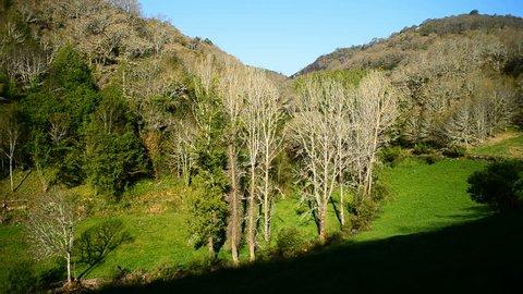 Landscape on the road between Villafranca del Bierzo and O Cebreiro, Provincia Leon, Spain, Europe. Camino de Santiago.