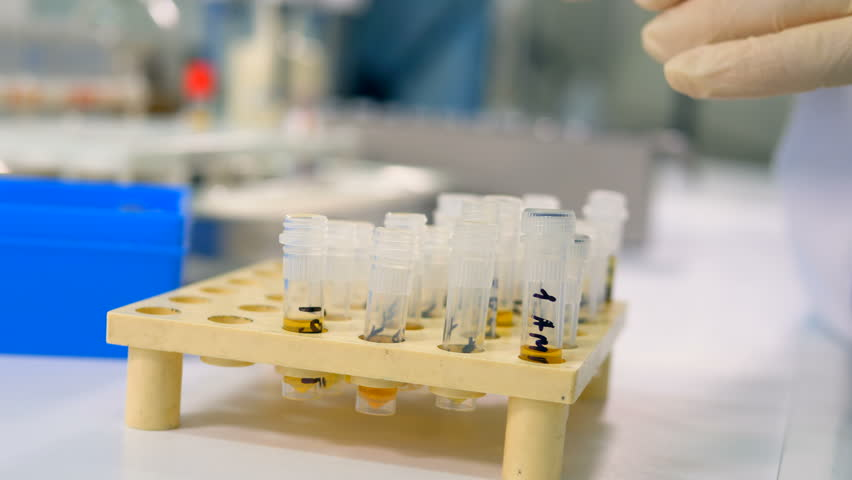 testing artificial urine samples Make sure your sample is at body temperature the urinator is a reusable device that holds and heats your synthetic urine sample to the perfect temperature every time.