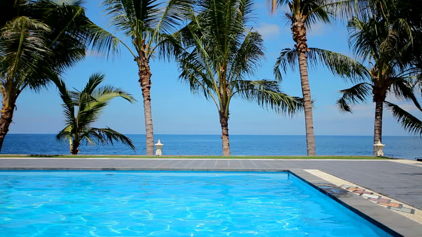 Swimming Pool and Palm Trees Stock Footage Video (100% Royalty-free)  3509432 | Shutterstock