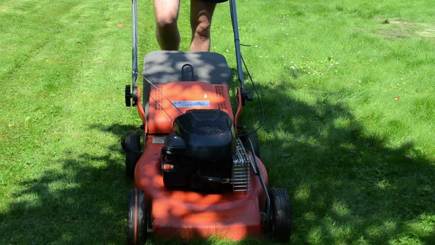 worker man with shorts and flip-flop shoes mow lawn in yard