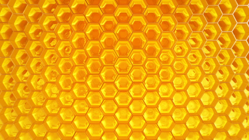 stock video of animation of fragment of honeycomb with Beehive SVG Vintage Beehive Drawing
