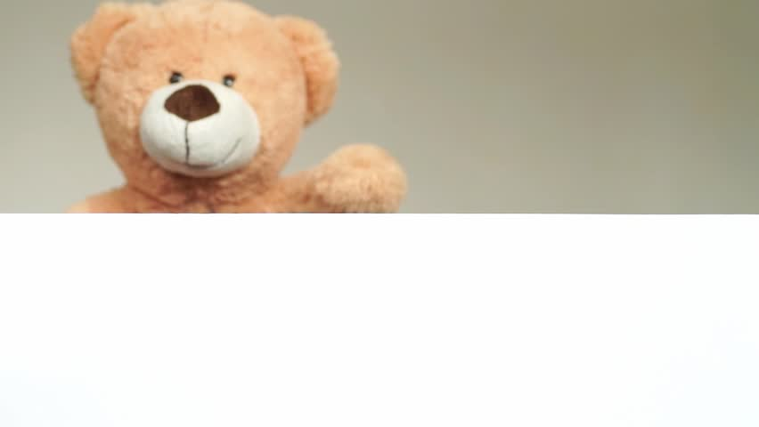 Teddy looks and waves on an empty plate / Marketing | Shutterstock HD Video #3650792