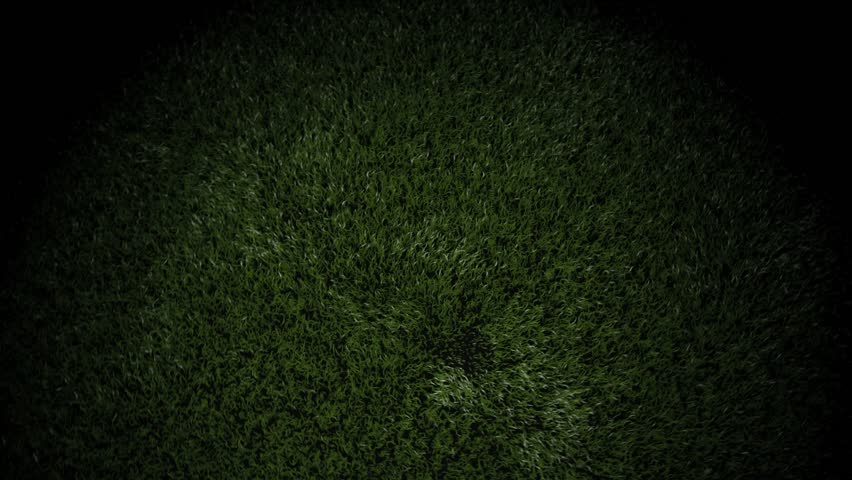 3D animation of a soccer ball bouncing on grass and settling to accommodate text or a title.