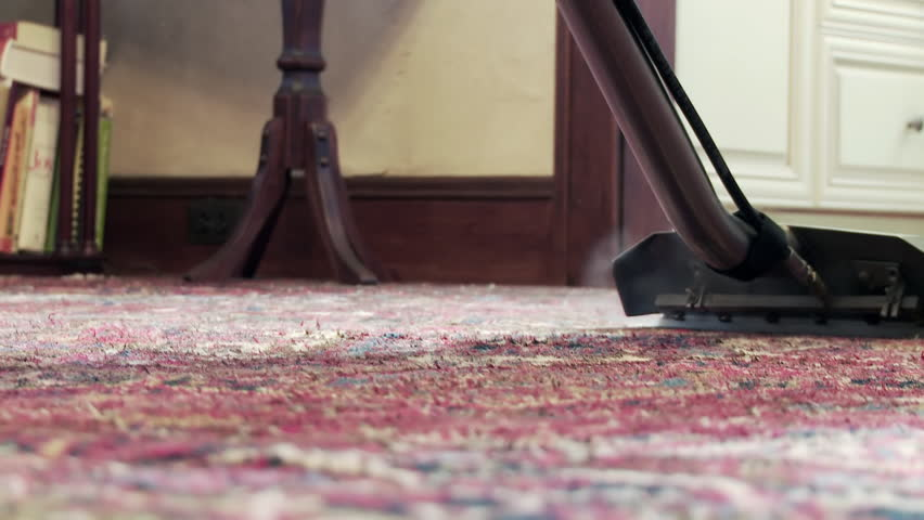 Cleaning a carpet with a steam wand, close up from the rear.