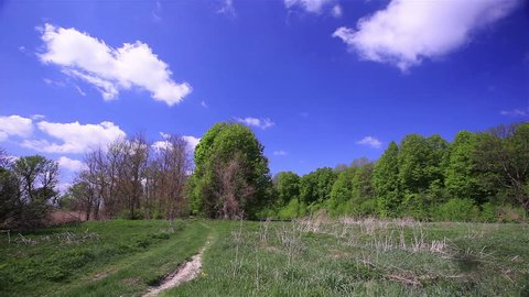 blue sky with clouds and the wood. Time lapse