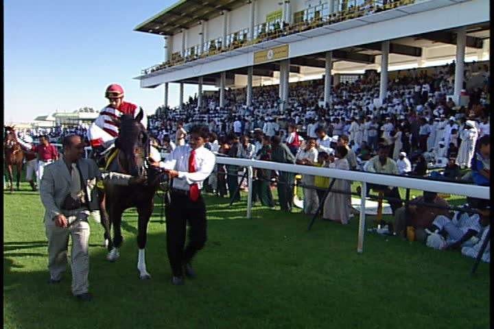 DUBAI - NOVEMBER 02, 2001: General views of Jebel Ali Race Course; horses with jockeys being led by teams of two past the camera.