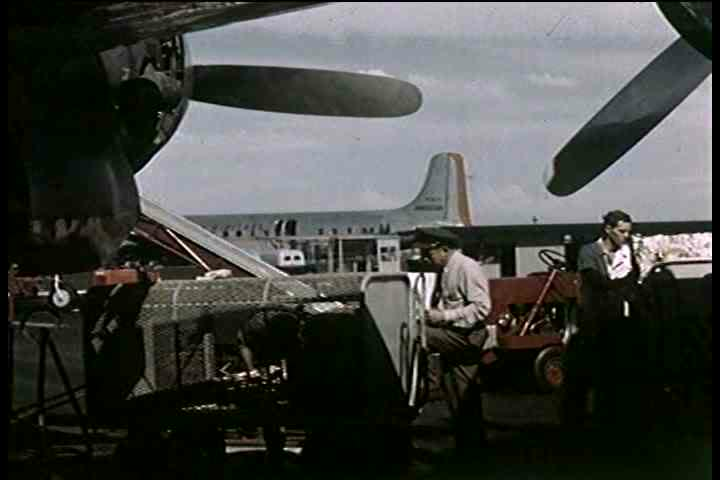 1950s - Customs inspectors inspect passengers at an airport after a plane has landed.