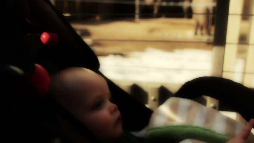 A baby boy in his stroller watching  at the zoo | Shutterstock HD Video #4294832