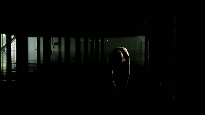 A wide shot of a beautiful mysterious woman is facing the camera as a silhouette with a rim light. Some camera flashes goes off during the video, but they never reveal her face.