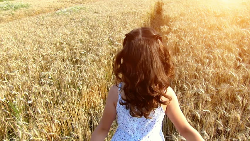 Little girl running cross the wheat field at...