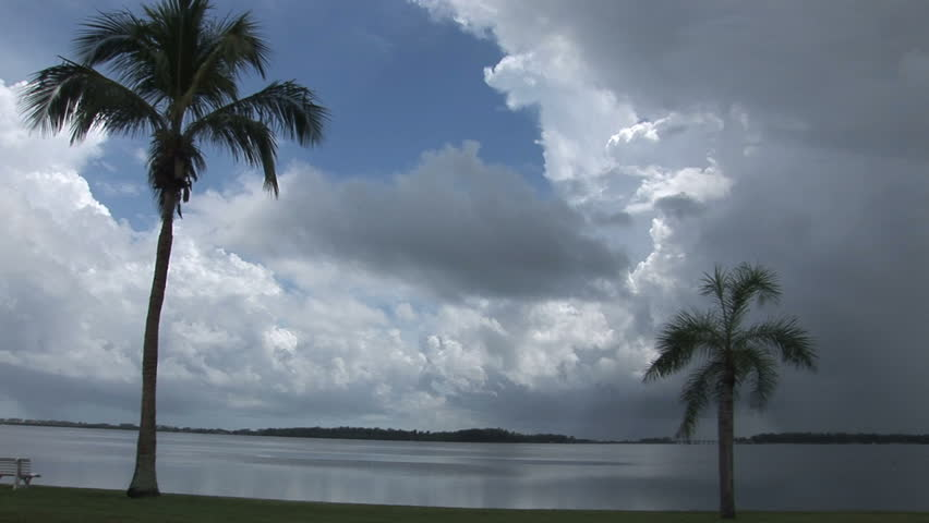 Florida clouds and palms and gulf | Shutterstock HD Video #4724222