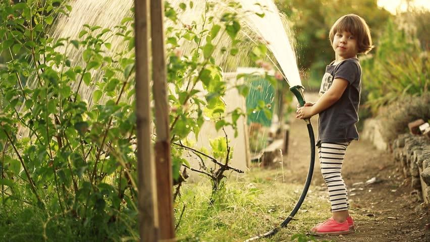 Happy toddler girl having fun watering plants in green community garden.