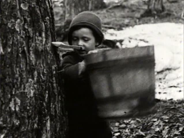 1910s - The making of maple syrup in Canada in 1919.