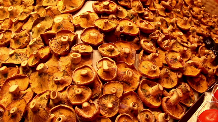 Marketed pile of mushrooms freshly displayed. Mushroom is really good for you for it is rich in vitamin D; iron and protein.