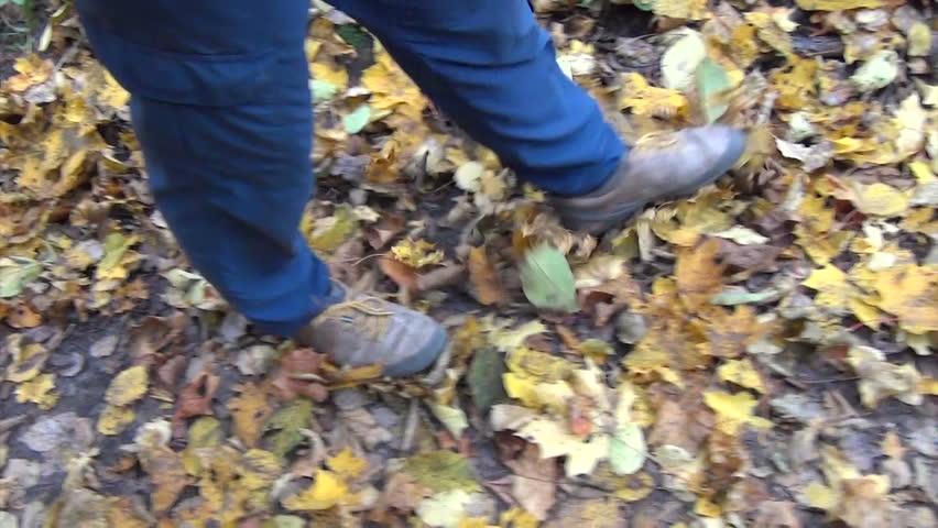 Follow man legs walk between colorful autumn leaves.