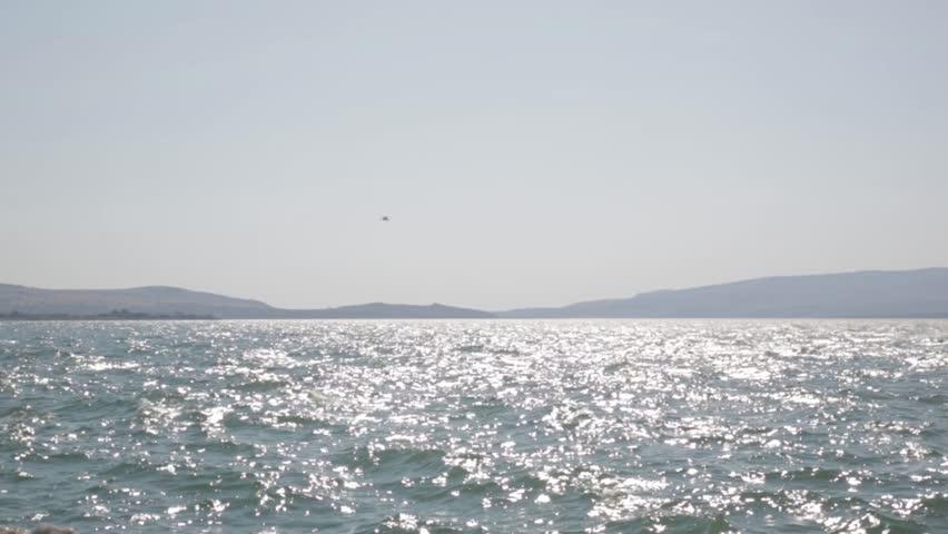 Header of Mytilene