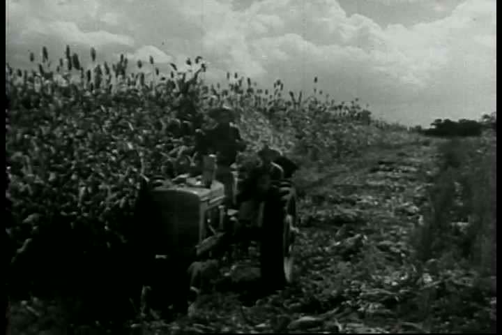 A 1943 Film About the Stock Footage Video (100% Royalty-free) 5272442 |  Shutterstock