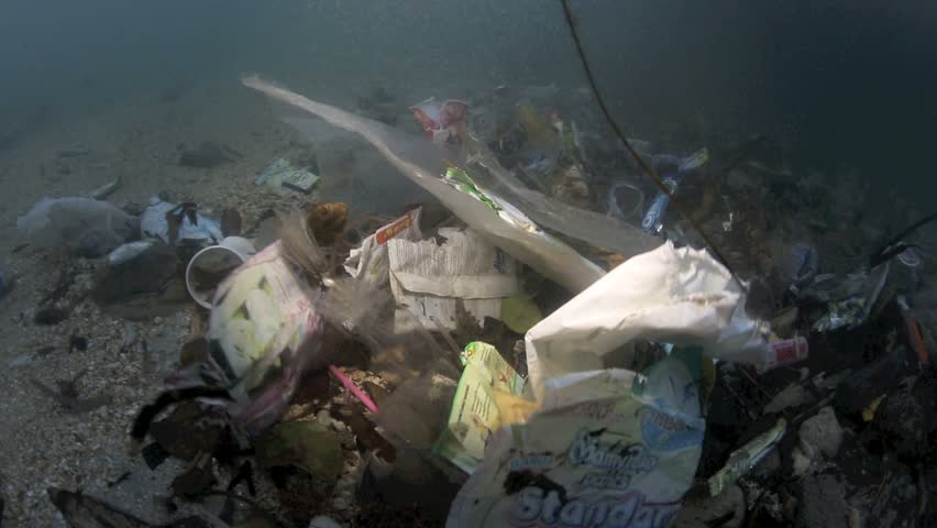 Plastic garbage and other debris floating in the tide mark underwater in Bunaken Island, Sulawesi #5408732